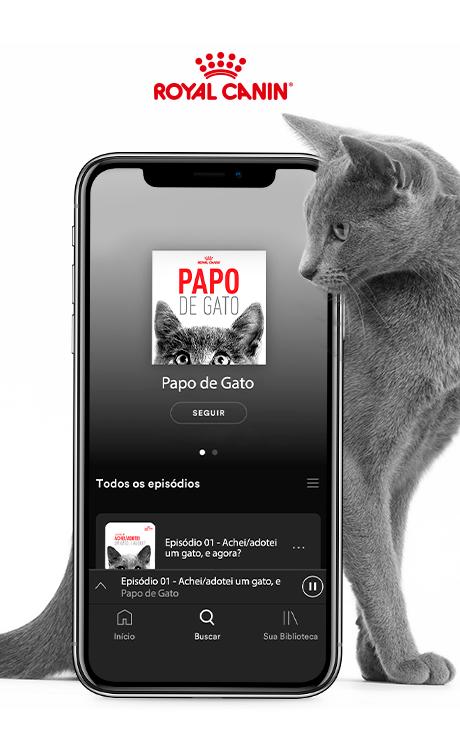 logo do case relacionado: Papo de Gato - Royal Canin